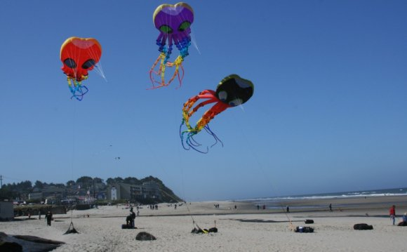 Kite Flying Locations