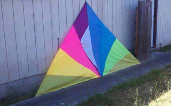 Vintage Spectra Star Kite