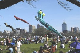 Austin Kite Festival on the Lawn at Zilker Park. (Photo/Eric Beggs)