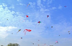 How does a kite fly?