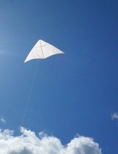 How to make a kite like this Dowel Delta, and many others.