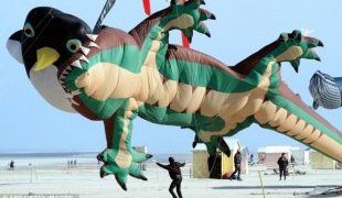 Kite fight: A giant lizard kite appears to be swallowing a smaller penguin