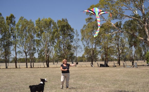 Kite flying Lessons
