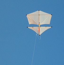 Learn how to build a Roller kite from bamboo skewers and plastic!