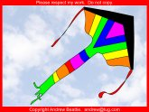 Best Kite for Kids
