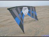 Revolution Kites for sale