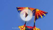 Fabulous Firebird kite by White Bird Kites