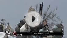 Spring Snow Goose Hunting with Up North Outdoors Over